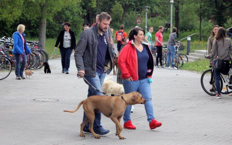 10. Mai 2016: On Tour mit Kultur am Universitätsgelände Bayreuth - Bayreuth%2BII%2B%252818%2529.jpg