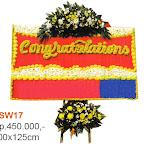 VSW17.jpg