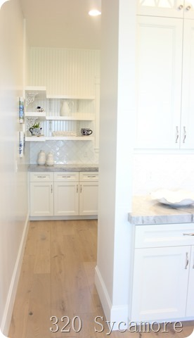 pantry behind kitchen