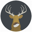 wild animal search icon
