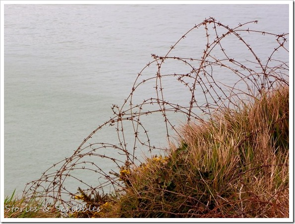 29032016 Point du Hoc and Arromanches (91)