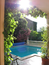 Photo: We like the way the vine has draped a sunshade around our terrace, which is especially convenient in the evening when we dine as the evening sun would otherwise be a bit bright for some of us sitting there facing outwards.