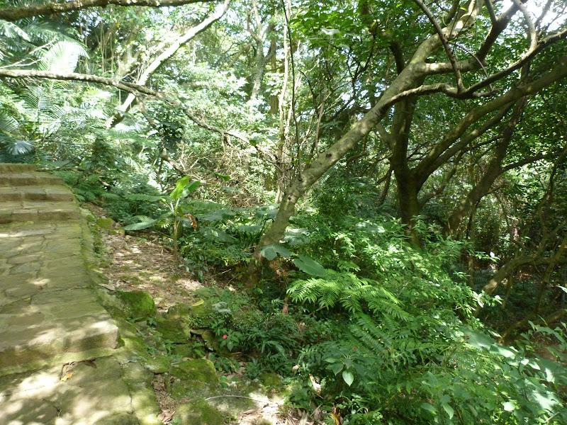 TAIWAN Taipei Dahu Park et dans le quartier de SHIH CHIEN University - P1260226.JPG