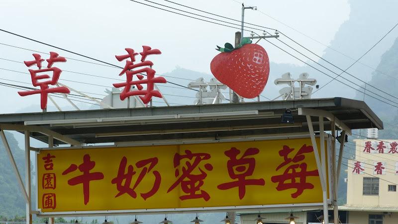 region fameuse pour ses fraises