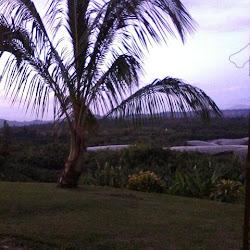 Hospital San Joaquin-Cuba's profile photo