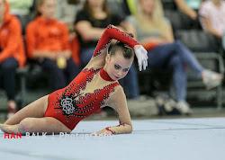 Han Balk Fantastic Gymnastics 2015-2473.jpg