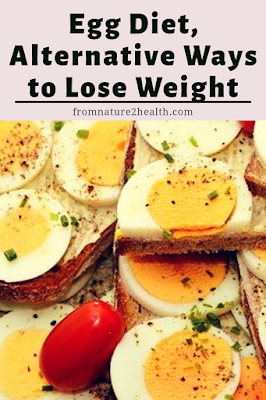 Egg Diet for Healthy Diet