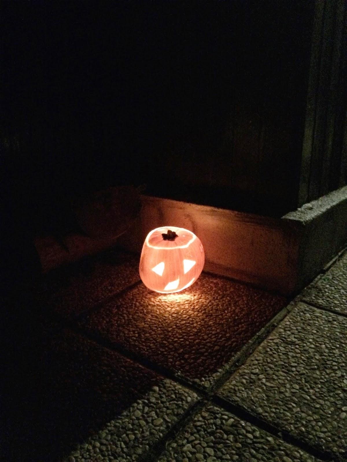 MČ jesenovanje, Črni dol, 24.26. 10. 2014 - IMG_0638.jpg