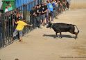 097-peña taurina linares 2014 350.JPG