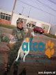 2da asistencia a Pisco por terremoto 2007 (9)