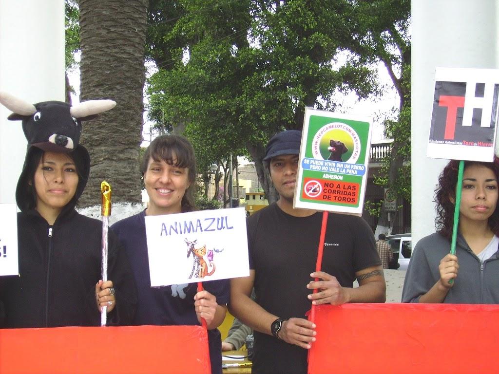 homomaquia2010ALCO (114)
