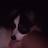 john doane avatar image