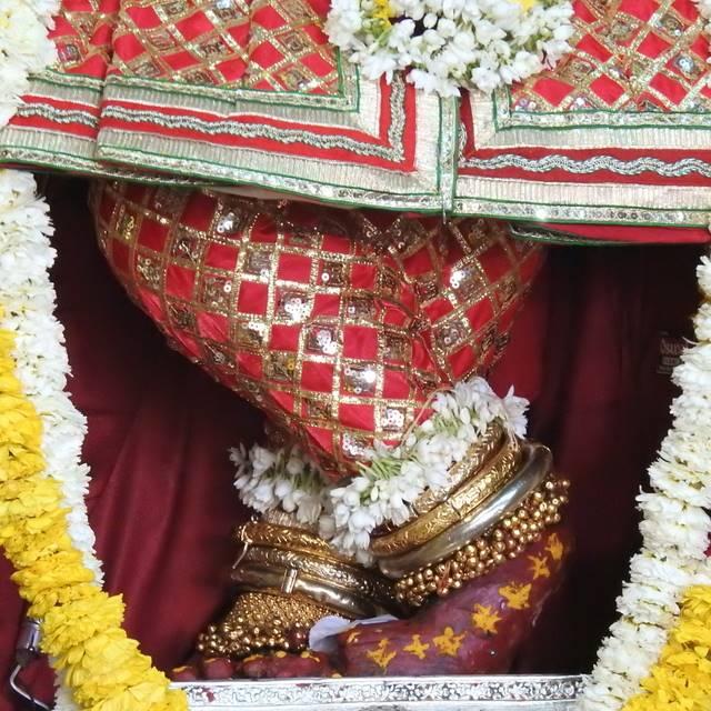 Radha Govind Devji Deity Darshan 01 Mar 2016 (7)