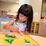 This Montessori preschool girl is working with the Montessori Botany Cabinet. She's learning the names of leaf shapes as she traces the cut-out shape with a pointer, then traces the leaf with both a pointer and her fingers. (Do you know the names of these shapes? No? She's four, and she does!)