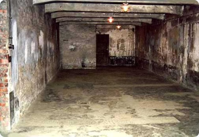 L'Olocausto allo scanner: Il Rapporto Leuchter le pretese gassazionie e incinerazioni di massa.