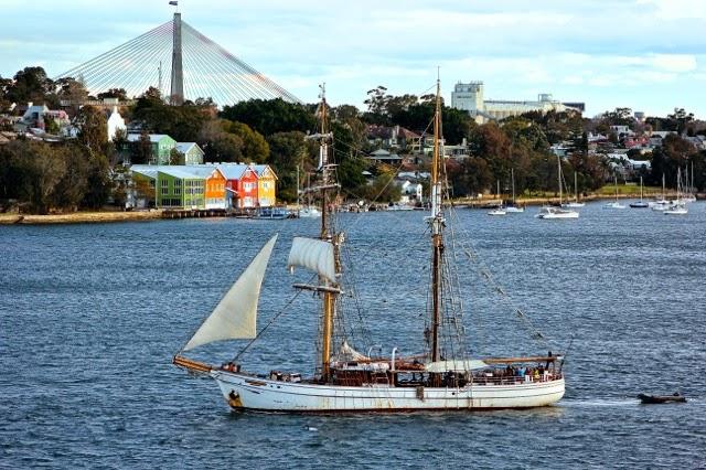 Sailing in Sydney