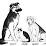 Tracy Murray's profile photo