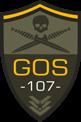 GRUPO OPERACIONES SIMULADAS 107
