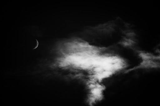 The Wild Moon. Photographer Alex Berger