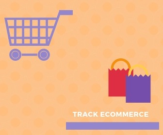 monsterinsights-track-ecommerce