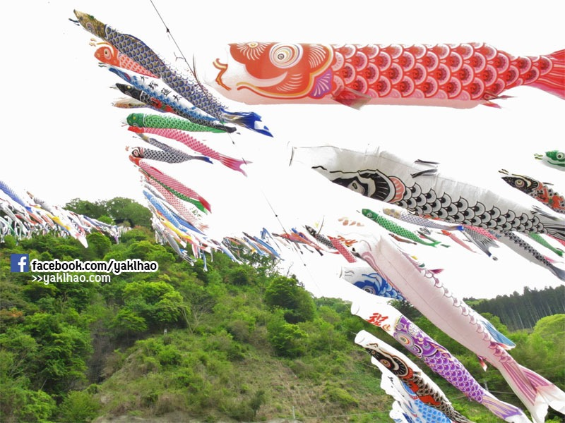 carp-fish-flag-fes-07