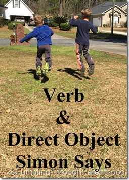 Verb & Direct Object Simon Says