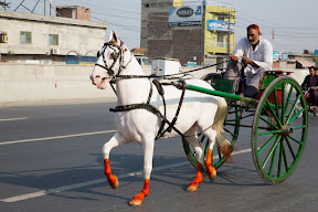 Traditional Old Luxurious Conveyance in Lahore
