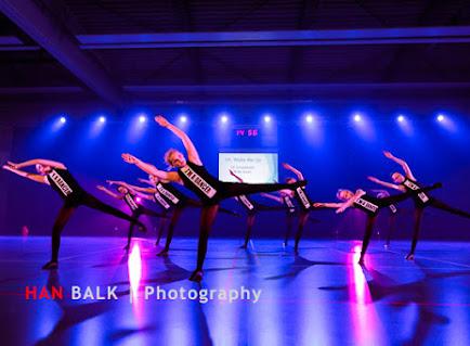Han Balk Voorster Dansdag 2016-3811-2.jpg
