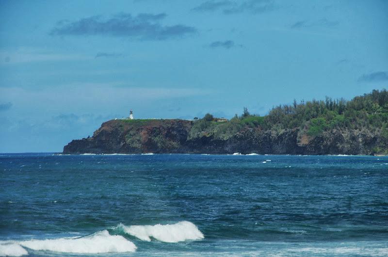 06-25-13 Annini Reef and Kauai North Shore - IMGP9341.JPG