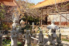 12/16大王にある、大慈寺(あじさい寺)です。早咲きの桜でも有名みたいです。