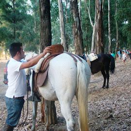 III Ruta a caballo nocturna en Lobón
