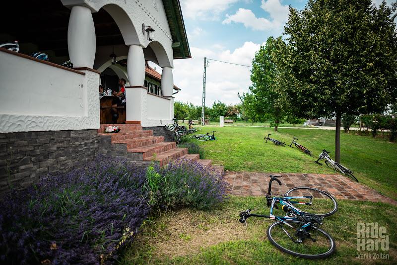 Moment de respiro la crama de pe deal, cu priveliste spre Balaton si cu miros de lavanda.