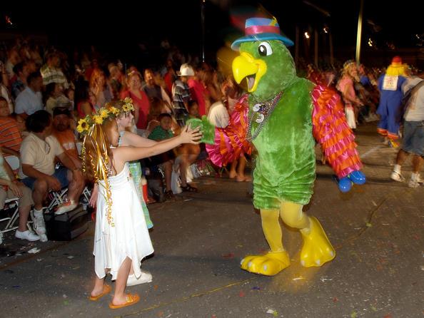 San Antonio - Fiesta Parrot