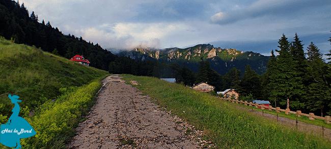 peisaj muntele rosu