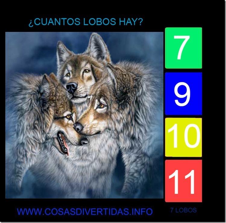 7 LOBOS 5