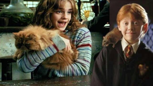 Há 28 anos Hermione Granger comprava Bichento e Rony comprava um tônico para perebas