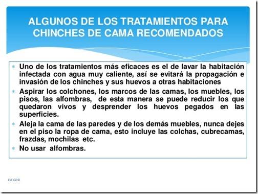 chinche-de-cama-cimex-lectularius-13-638