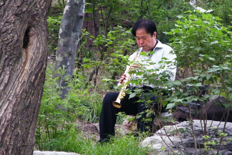 ¿Qué ver en Beijing? Parque Jingshan