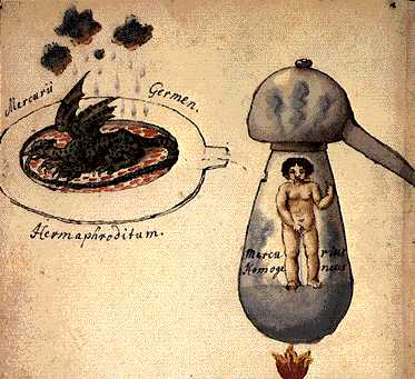 The Sprout Of Mercury From Cabala Mineralis Manuscript, Hermetic Emblems From Manuscripts 1