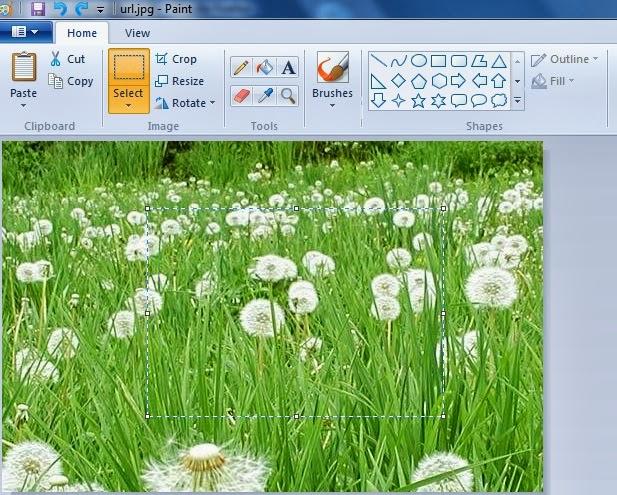 thiet-ke-web-tai-da-nang-web360.com.vn