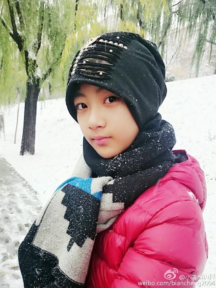 Bian Cheng  Actor