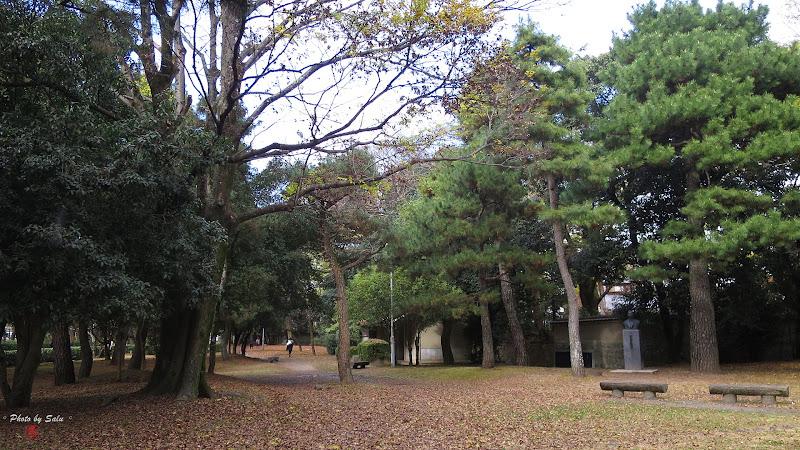 鴨川三角洲公園