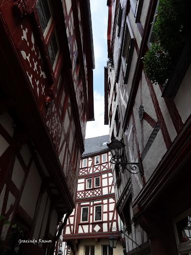 passeando - Passeando pela Suíça - 2012 - Página 21 DSC08339