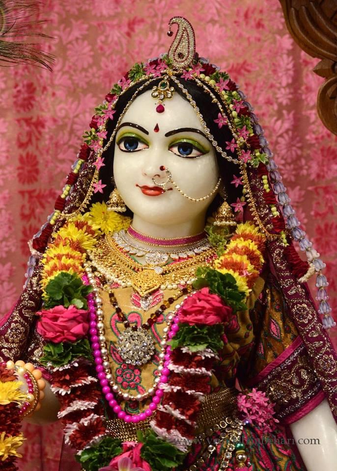 ISKCON GEV (Wada) Deity Darshan 23 Jan 2016 (5)