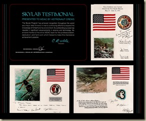 McDonnell Douglas Skylab Testimonial Poster