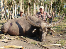 Mr Kosa from Hungary with a very impressive buffalo on the edge of the floodplains