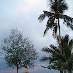 Beach, early morning (Malapascua)