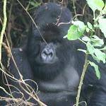 rwanda076.JPG