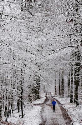 """1. plads februar 2019, foto: Hans Blensø. Tema: """"Vinter""""."""