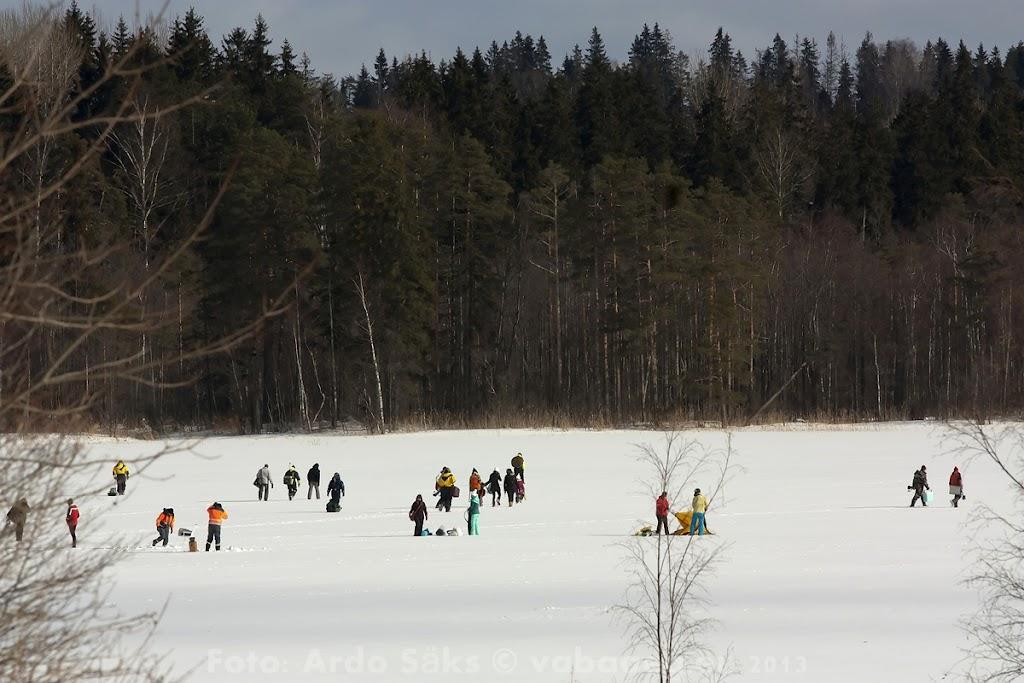2013.03.09 Eesti Ettevõtete Talimängud 2013 - Kalapüük - AS20130309FSTM_0175S.jpg